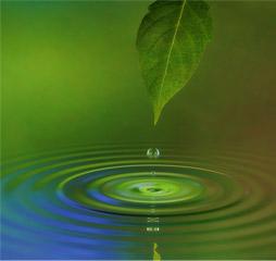 Protéger la ressource en eau